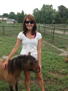 I am extremely passionate about these miniature horses because MINIATURE.  HORSES.